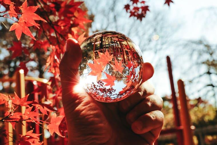 水晶玉から見る紅葉の世界