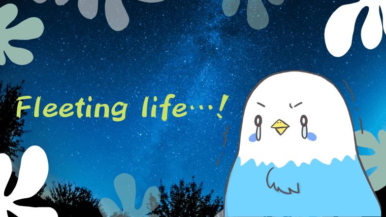 涙するグッドリのアイキャッチ画像
