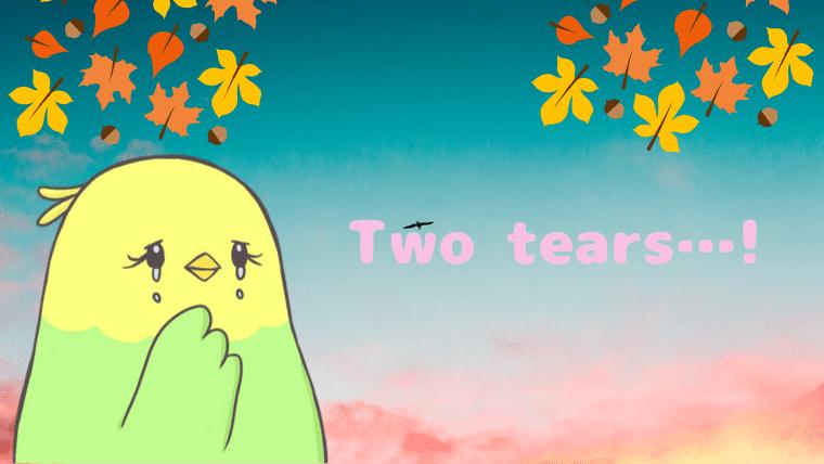 涙を流すニコのアイキャッチ画像