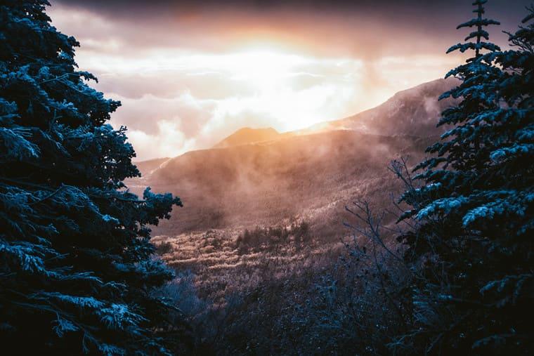 幻想的な白銀の森