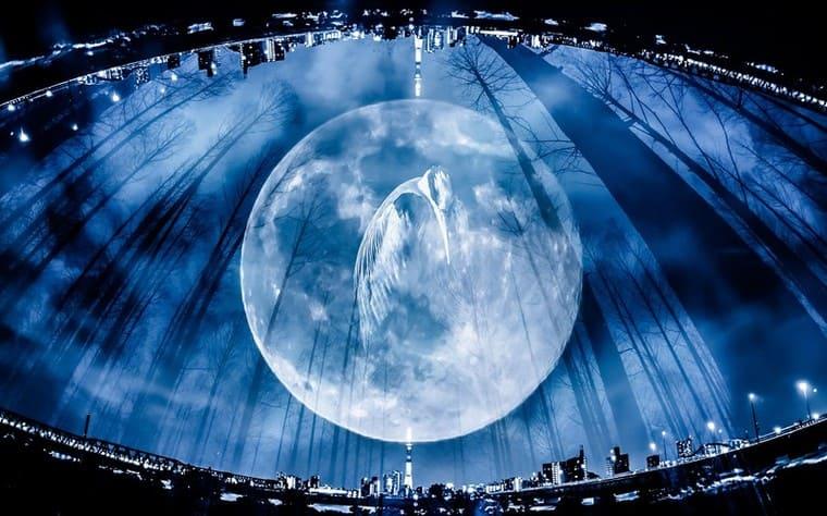 満月と鶴フォトモンタージュ
