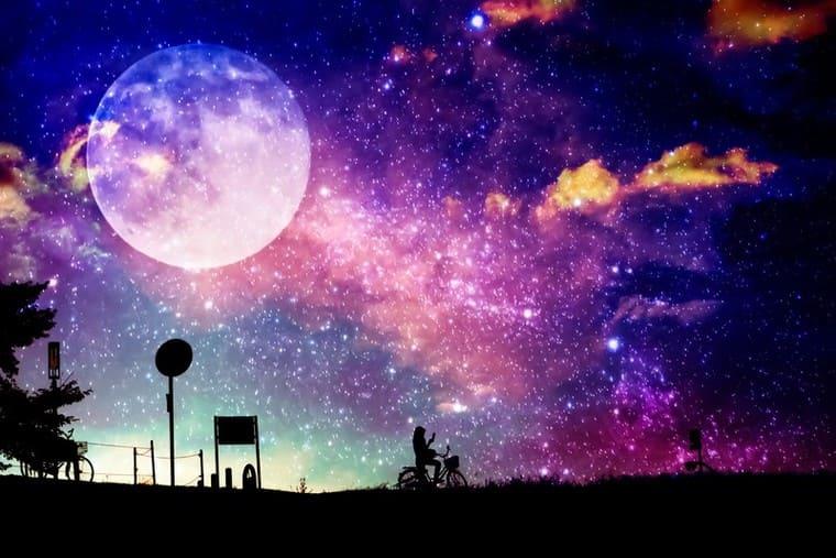 満月を背にフォトモンタージュ
