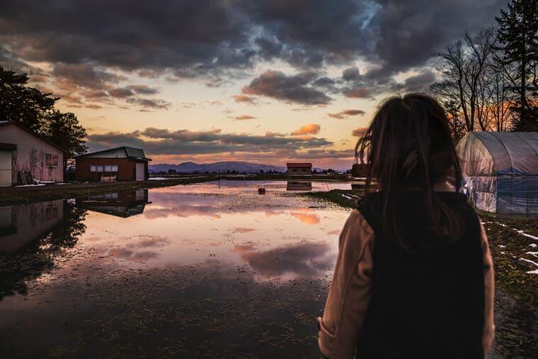 夕暮れのセリ畑を見つめる少女