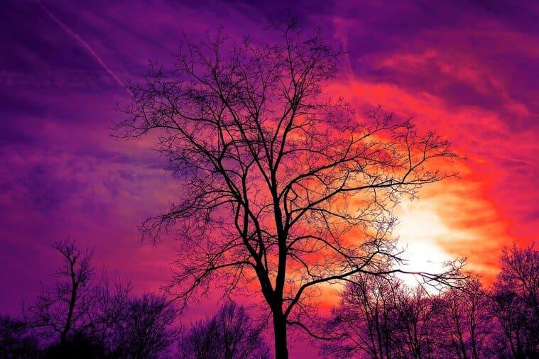 真っ赤な夕焼けの空